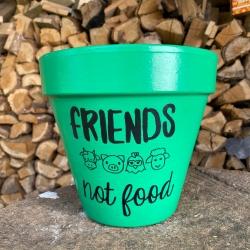 Maceta grande FRIENDS Not...