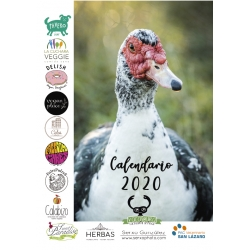 Calendario 2020 Santuario...